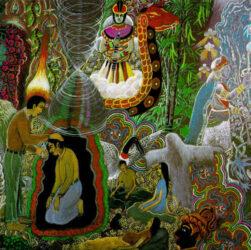 pericoli ayahuasca