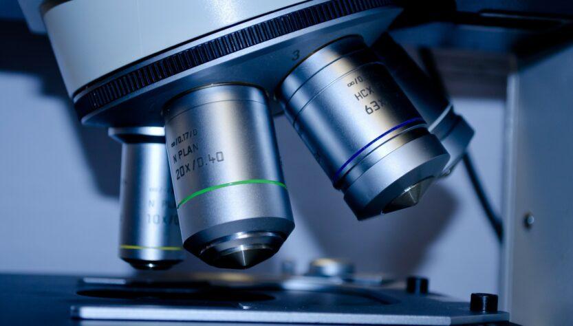ayahuasca al microspcopio