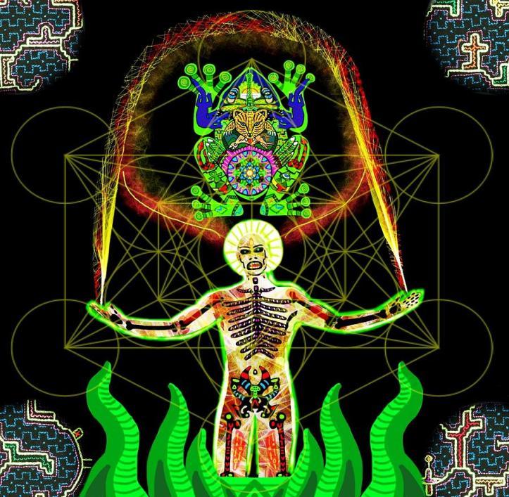 kambo occidentalizzato, misticizzato e spiritualizzato