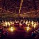 uomini-d-affari-ayahuasca