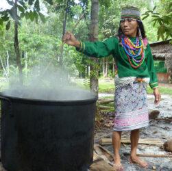 preparazione dell'ayahuasca in Perù