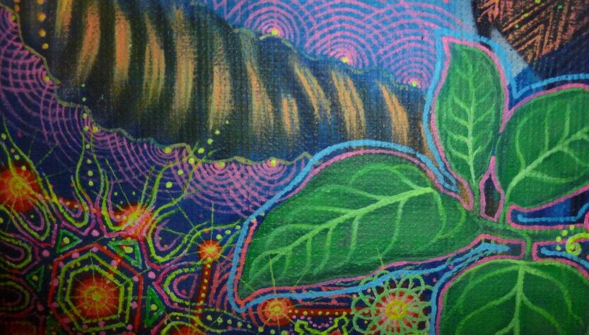 ayahuasca e salute planetaria