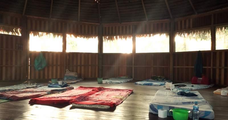 ayahuasca: uso sciamanico e contemporaneo